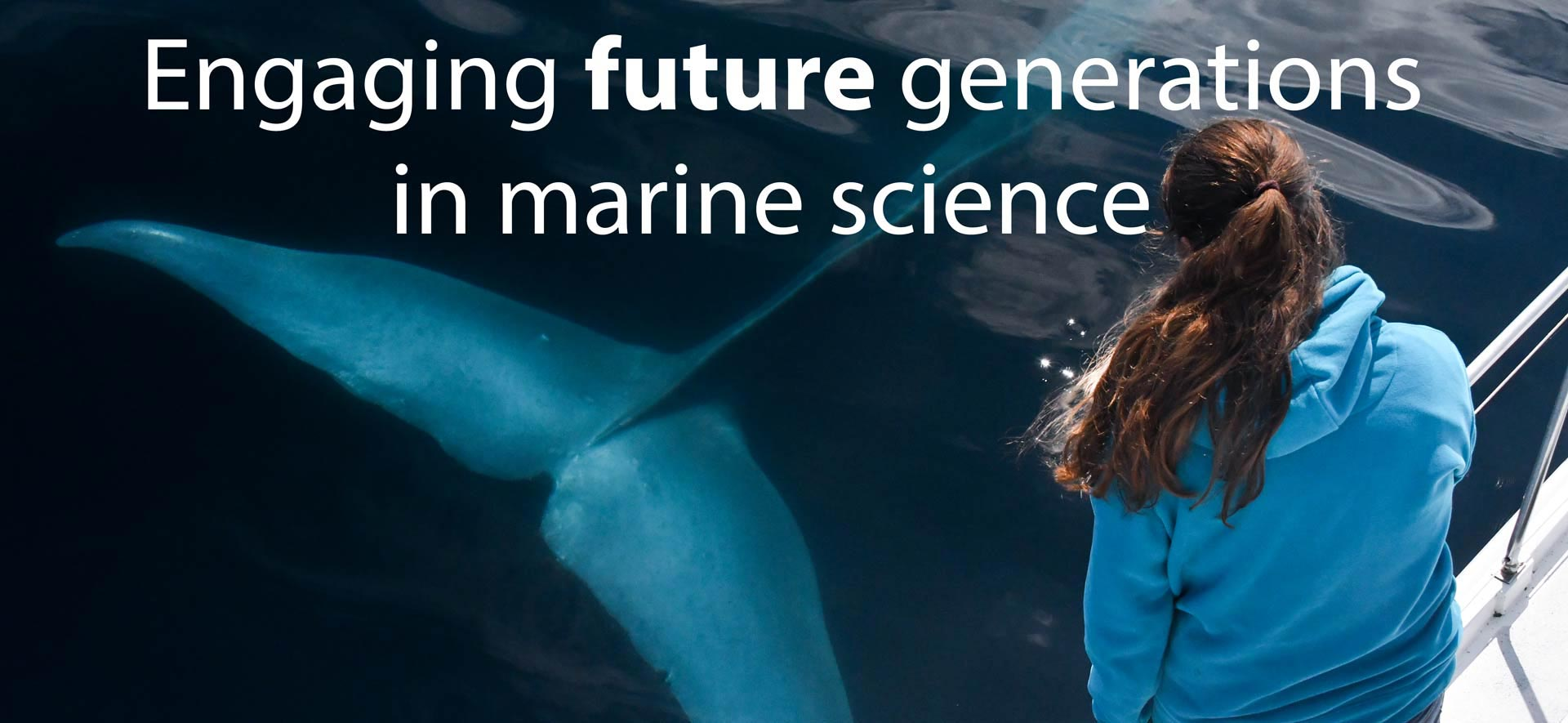 Internships in marine mammal science